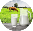 Sữa tươi Pháp